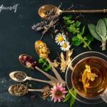 8 plantas y vegetales que cambiarán tu piel