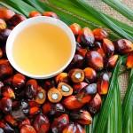 ¿Qué efectos negativos tiene el aceite de palma para nuestra salud?
